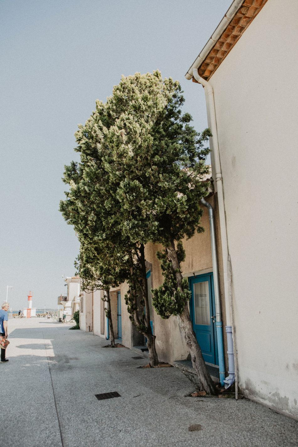 carte de postale de provence